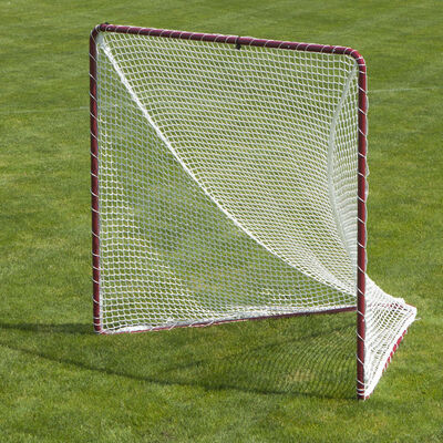 FoldFast Shotenheimer Goal with 5 MM Net