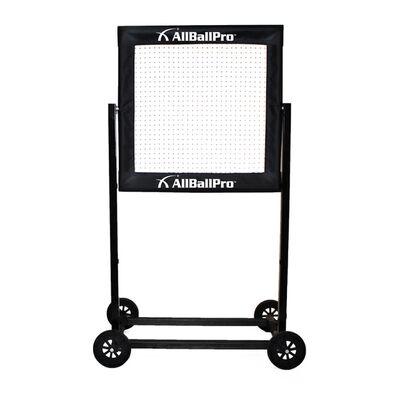 AllBall Pro Stinger X Rebounder