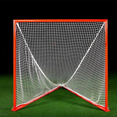 Brine Professional Goal
